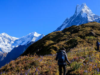 Mardi Himal Trek by Adventure Altitude Treks
